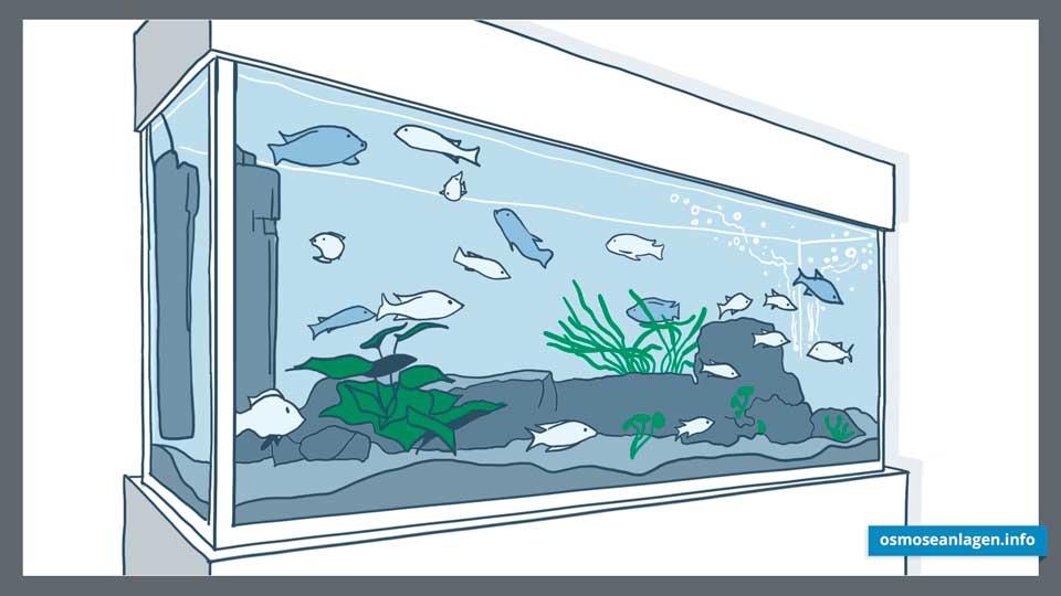 Osmoseanlage für das Aquarium